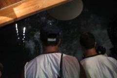 BA-2012-orlando-073-2-Copier